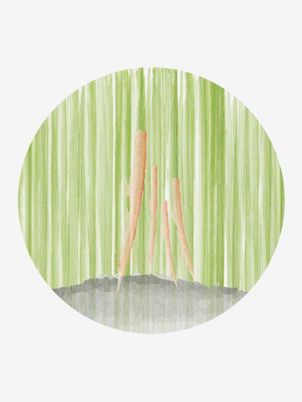 """""""4 Conversas"""" (2021). Xinyi Wang"""
